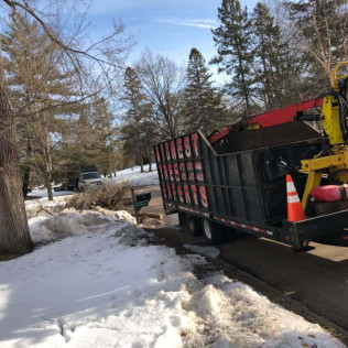 Midwest Tree Experts in Maple Grove, MN